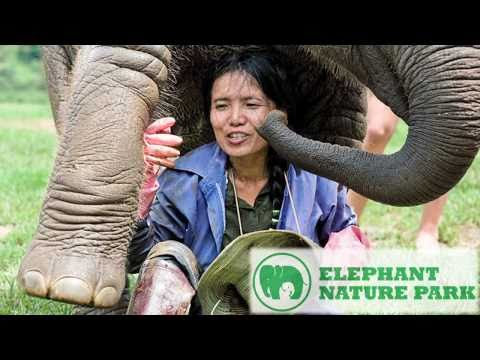 Elephant Nature Park & Foundation - Volunteer Trailer