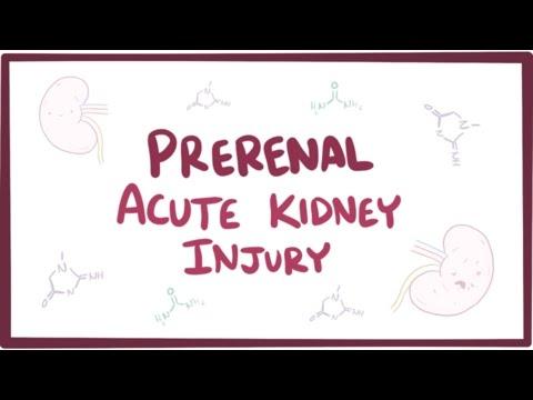 Prerenal acute kidney injury (acute renal failure) - causes, symptoms & pathology