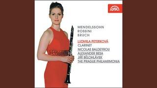 Concerto for Clarinet, Viola and Orchestra in E minor, Op.88 - Andante con moto