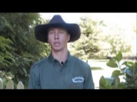 Brad Scott's Bull Riding Clinic Testimonials NZ