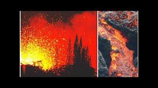 Hawaii volcano eruption HORROR: Kilauea 'DESTROYS' island tourism as ticket prices CRASH