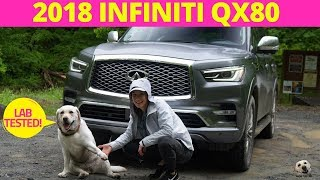 2018 Infiniti Qx80 4wd: Andie The Lab Review!
