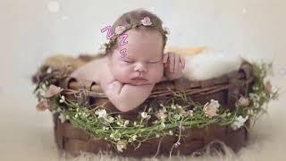 Lullaby Mozart Bedtime Music 🎵 Mozart for Babies Brain Development 🎵065