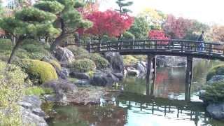 白鳥庭園の紅葉(愛知県名古屋市熱田区)(2013.11.29)