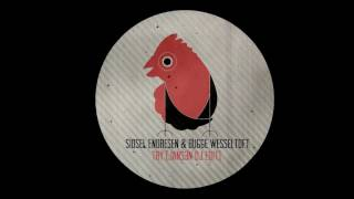 Sidsel Endresen & Bugge Wesseltoft – Try (Jans3n Edit)