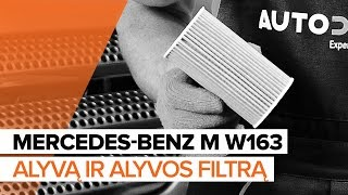 Montavimo Alyvos filtras MERCEDES-BENZ M-CLASS: vaizdo pamokomis