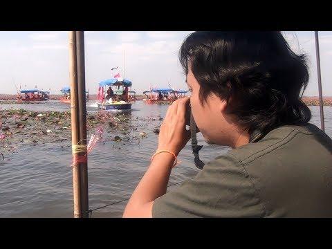 Lotus Sea in Sakon Nakhon - Thailand Travel
