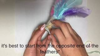 DIY Cat Toys | feather teaser