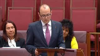 Sen. Raff Ciccone (ALP-Vic) - Maiden Speech (Jul 24, 2019)