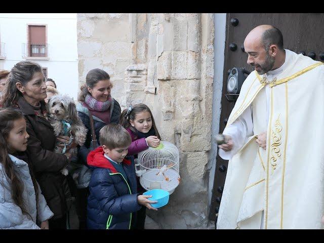 Vídeo: Bendición de mascotas en Santiago con motivo del Día de San Antón