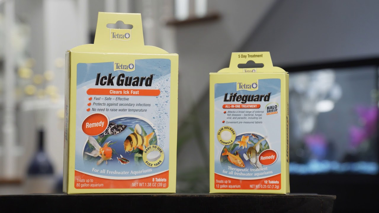 Ick Guard® Tablets | Tetra®