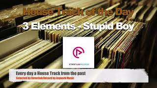 Скачать 3 Elements Stupid Boy House Vox Extended Mix