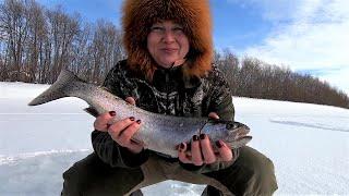 Эх рыбалочка. За микижей по реке Камчатка.