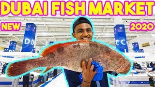 Dubai Fish Market - WaterFront Market in Dubai - World's Best Market