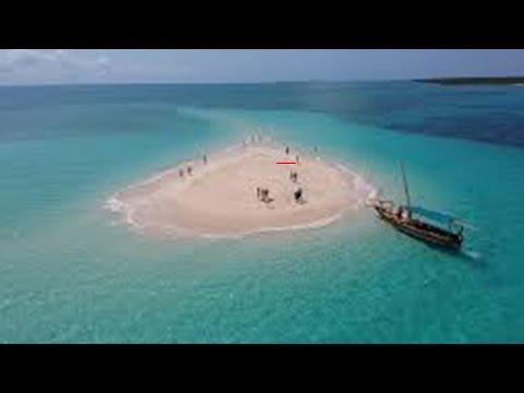 Zanzibar - Safari blue, Kwale Island, Old Baobab, Menai Bay - Edited by Carmine Salituro