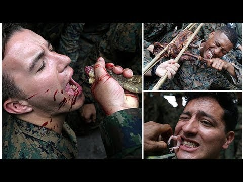 Amazing pics of US Marine training shows recruits covered in blood while being forced to eat snakes