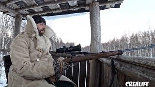Охота на кабана зимой 2019 с вышки во сне