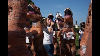 Why were there hundreds of dinosaurs in DC?