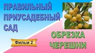 Правильный приусадебный сад Фильм 2 Обрезка черешни