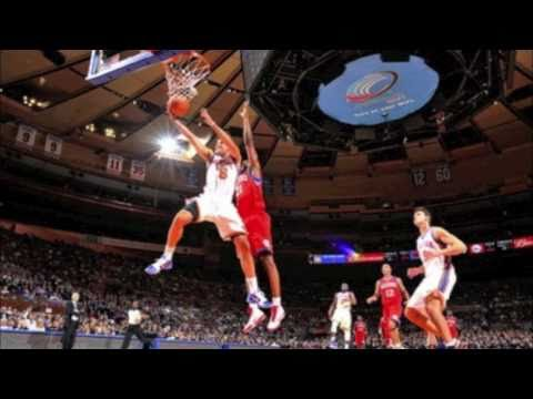 Landry Fields Highlights