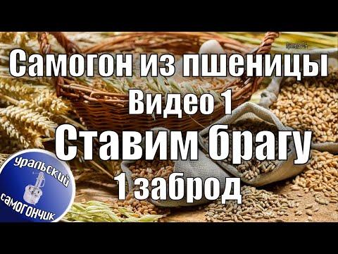 Самогон из пшеницы. Видео 1 - Ставим брагу, 1 заброд.