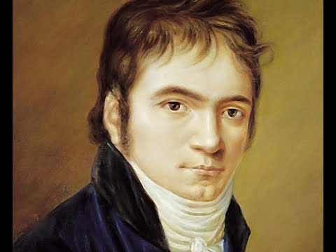 Beethoven Sonata for Piano and Violin No.1 in D major (1st movement)