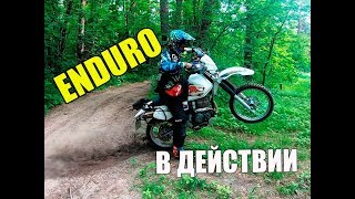 ЭНДУРО день на Yamaha TTR250 и MTB Enduro Day