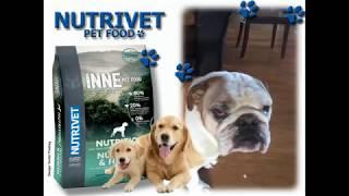 Funny dogs & NUTRIVET zdrava hrana za pse i mačke (2)