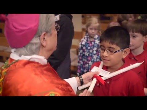 Mass celebrates Catholic schools