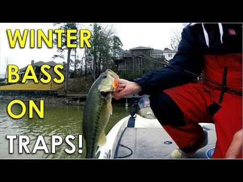 Throwing Lipless Crankbaits In 2ft Of Water For Winter Bass!