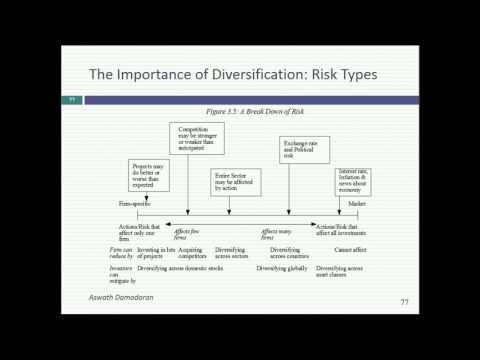 Session 5: Risk & Return Models & The Marginal Investor