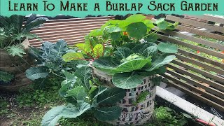 Learn to make a burlap sack garden in 20 minutes - Tutorial