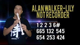 NOT ANGKA - ALAN WALKER - LILY RECORDER  ( TURN ON SUBTITLE)