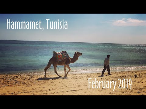 Hammamet, Tunisia - February 2019