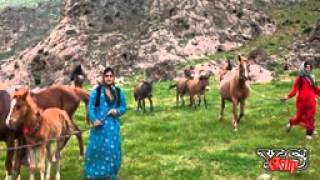 En güzel Kürtçe Şarkılar  özel derleme - 2020