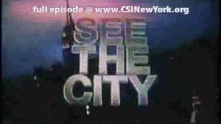CSI: NY Season 6 Episode 15 The Formula Online