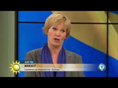 Därför kan Storbritannien inte lämna EU - Nyhetsmorgon (TV4)