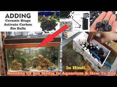 Aquarium Bio Media What Are They & How To Use Them. How To Keep Media In Internal Filter