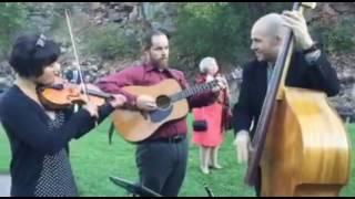 Fever Bluegrass Cocktail Trio