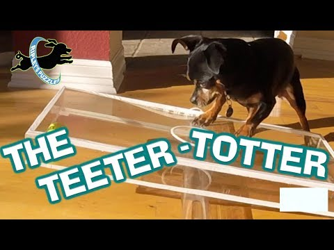 Teeter Totter Puzzle