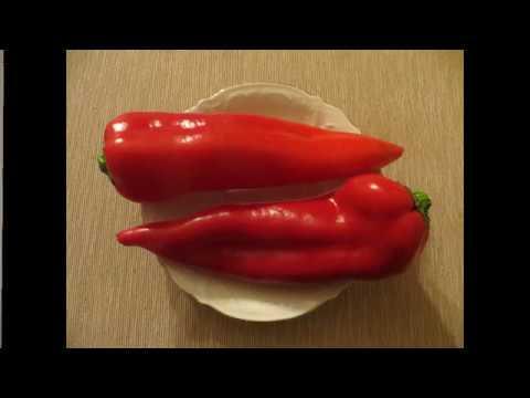 """Перец сладкий """"Рамиро"""" (красный). Семена из магазинного перца."""