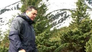 видео природа Карпат