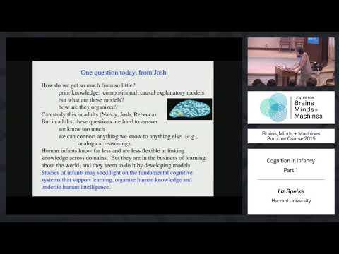 Lecture 3.1: Liz Spelke - Cognition in Infancy (Part 1)