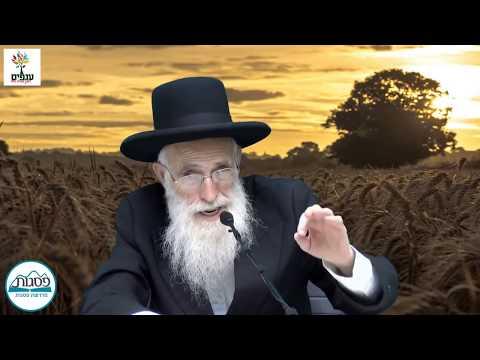 הרב יהודה יוספי - חנוכה
