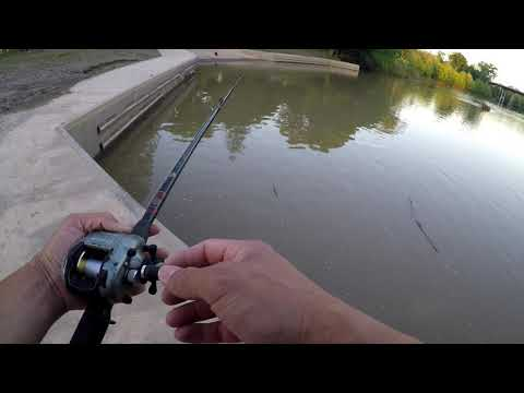 Fisherman Park Bastrop Texas Catfish