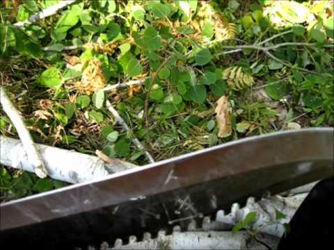 Survival Knife Review Wild Foraging And Many Animals