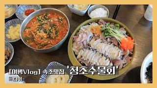 [여행Vlog] 13회, 속초맛집 '청초수물회'