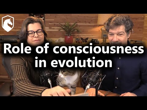 What is the role of consciousness in evolution? (from Livestream #67)