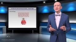 heute: MYTHOS GRAPHOLOGIE - Was ist dran an der Handschriftendeutung? (1080p)