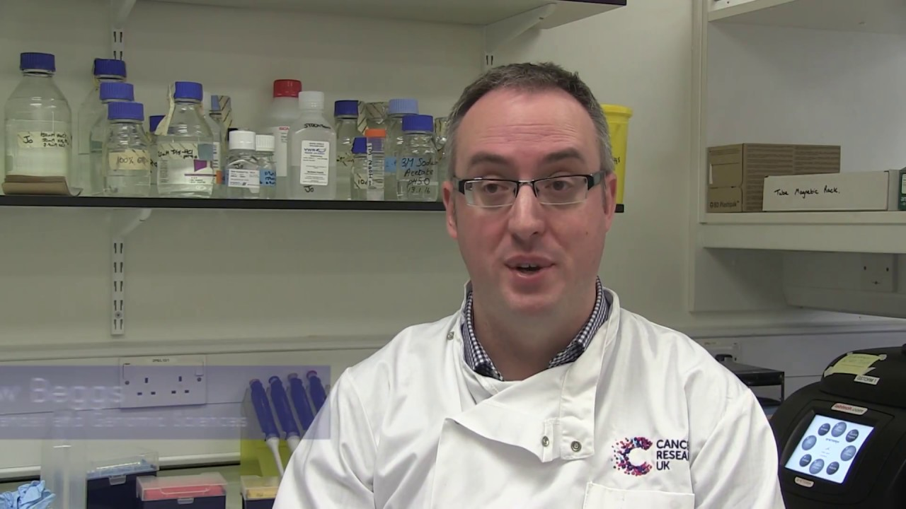 Scientists awarded £1 5m for pioneering bowel cancer research